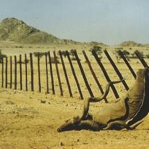 1980_Namibia